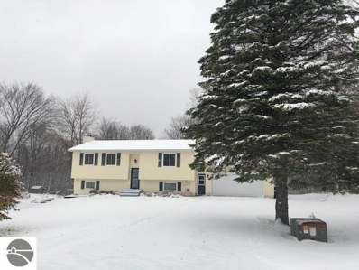 4705 Buckhorn Drive, Traverse City, MI 49684 - #: 1851873