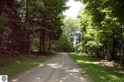 Wildwood Lane, Kewadin, MI 49627 - #: 1865431