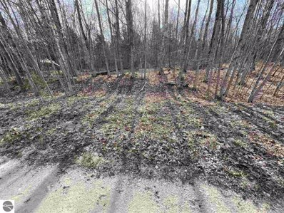 0 N Seasonal Road, Beaver Island, MI 49872 - #: 1887884