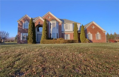 11489 Fellows Creek Drive, Plymouth Twp, MI 48170 - #: 217108745
