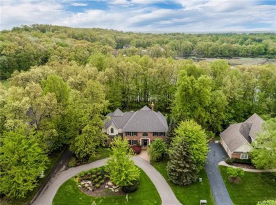 8972 Morning Mist Drive, Independence Twp, MI 48348 - #: 218013526