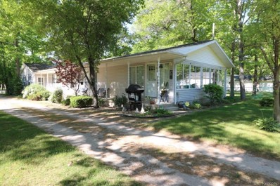2994 Port Austin Road, Hume Twp, MI 48467 - #: 218065608