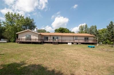 9482 Stelzer Road, Cohoctah Twp, MI 48855 - #: 218083524