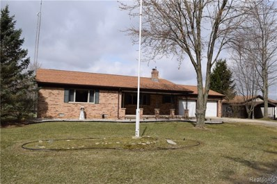 2220 Urban Road, Moore Twp, MI 48471 - #: 219030815