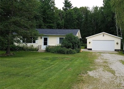 7869 Silsby, South Branch Twp, MI 48653 - #: 50100003262