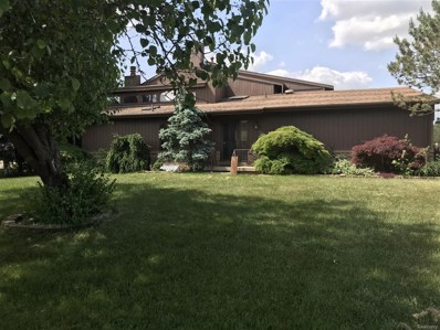 128 Riverview, Flushing, MI 48433 - #: 50100003319