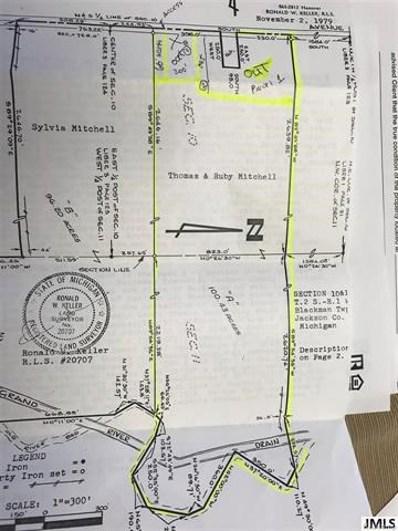 5219 Lansing Ave, Blackman Charter, MI 49201 - #: 55201800292