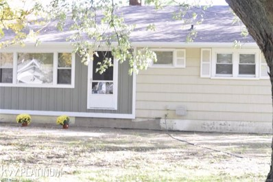 3146 Beach Road, Port Huron Twp, MI 48060 - #: 58031350550