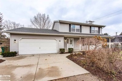 3973 West Water, Port Huron Twp, MI 48060 - #: 58031366544