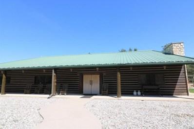 643 S Old Camp Trl, Crystal Twp, MI 48818 - #: 59018022714