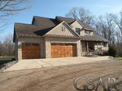 6341 Clise, Bath Twp, MI 48808 - #: 60031338220