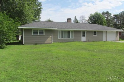 3295 Woodland Ct., Bridgeport Twp, MI 48601 - #: 61031387006