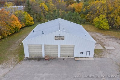 1213 E Fairplains Street, Greenville, MI 48838 - #: 65020044178