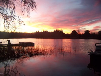 Saddlebag Lake Rd, Woodland, MI 48897 - #: 16041023
