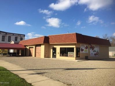 117 E Main Street, Centreville, MI 49032 - #: 17055378