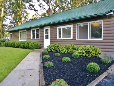 1561 E Wilcox Avenue, White Cloud, MI 49349 - #: 18043771