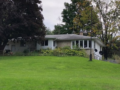 8123 Main Street, Bear Lake, MI 49614 - #: 18045269