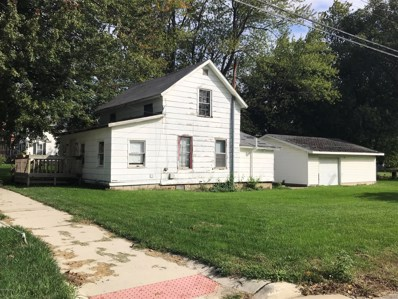 421 Chestnut Street, Reading, MI 49274 - #: 18049510