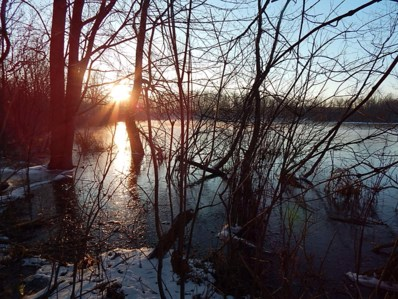 2 Hager (Sunfish), Woodland, MI 48897 - #: 18050600