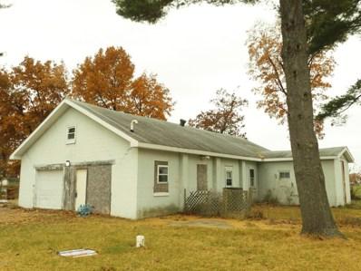 71162 Lakeview Drive, White Pigeon, MI 49099 - #: 18054799