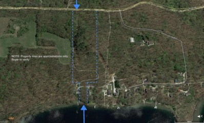 69382 Lake Trail, White Pigeon, MI 49099 - #: 18058217