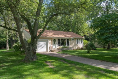 401 Orchard Circle, Gobles, MI 49055 - #: 19043826