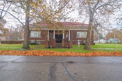 555 E Mansion Street, Marshall, MI 49068 - #: 19047197