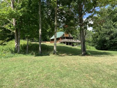 561 Hunter Ridge, Marion, MI 49665 - #: 19055606