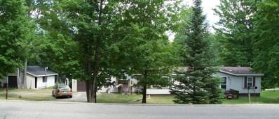 3544 N View Drive, Wolverine, MI 49799 - #: 313212