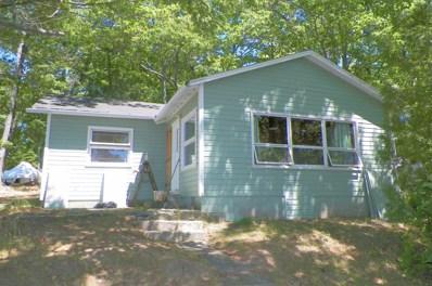 15817 Paradise Lake Road, Carp Lake, MI 49718 - #: 313390