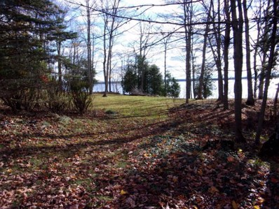 Long Point Road, Germfask, MI 49836 - #: 314782