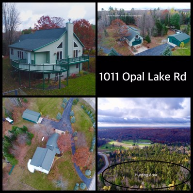 1011 Opal Lake Road, Gaylord, MI 49735 - #: 317229