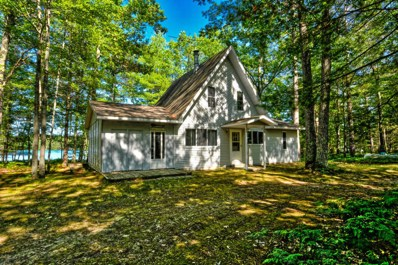 11986 Roger Road, Frederic, MI 49733 - #: 319454