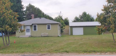 1327 W Van Road, Pellston, MI 49769 - #: 321510