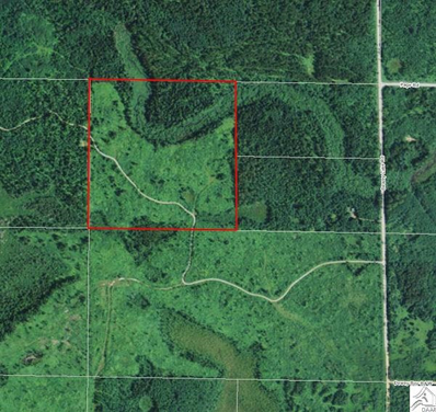 Tbd Dewey Lake Rd, Chisholm, MN 55719 - #: 6021212