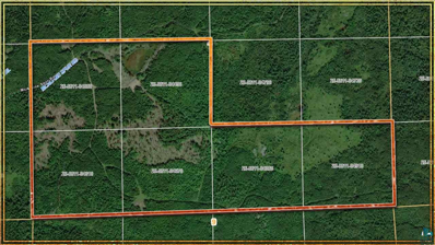 Tbd Mcalpine Spur Rd, Brimson, MN 55602 - #: 6094819