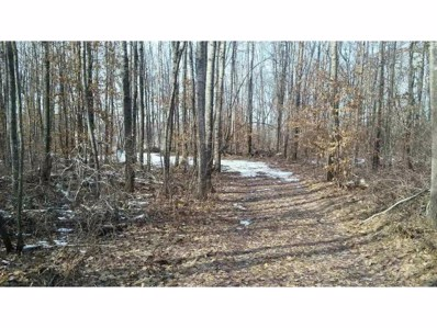 Xxxx Spruce Road, Irondale Twp, MN 56455 - #: 4809257