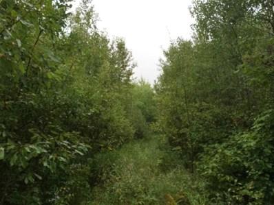 County Road 30, Blackduck, MN  - #: 4810186
