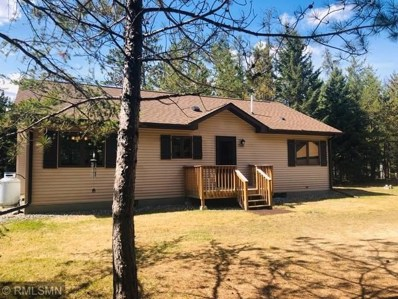 54101 E Bear Lake Forest Road, Cook, MN 55723 - #: 4948780