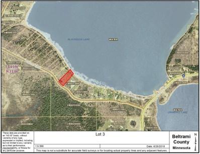 Lot 3 Ne Buckhorn River, Hines Twp, MN 56647 - #: 4973300