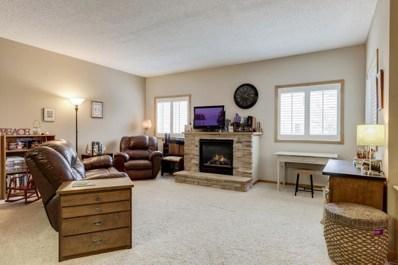 697 Kingfisher Lane, Woodbury, MN 55125 - #: 4993160