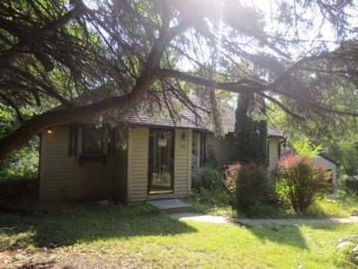 1250 County Road 19, Independence, MN 55359 - #: 5010439