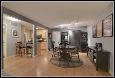 52 Groveland Terrace, Minneapolis, MN 55403 - #: 5023801