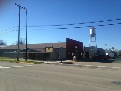207 W Main Street, West Concord, MN 55985 - #: 5029224
