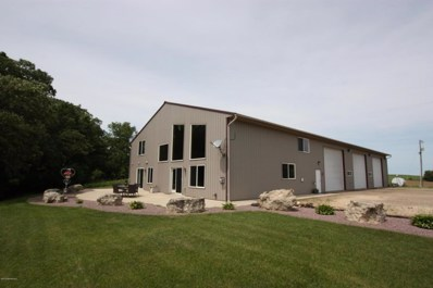 55223 310th Avenue, Elgin, MN 55932 - #: 5034294