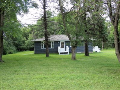 2582 151st Street, Currie, MN 56123 - #: 5155607