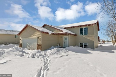 1007 6th Avenue NW, Rice, MN 56367 - #: 5193568