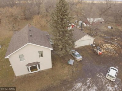 29768 340th Avenue, Lawrence Twp, MN 56565 - #: 5196354