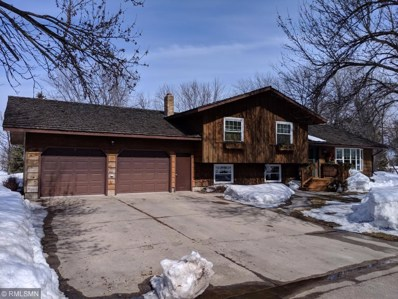 410 Fremont Avenue NW, Renville, MN 56284 - #: 5200859