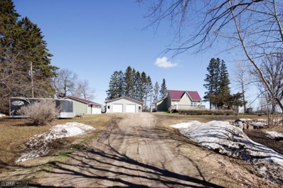 24590 Railroad Road, Dudley Twp, MN 56652 - #: 5219089
